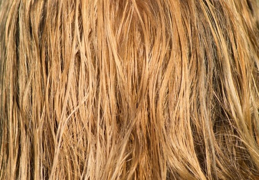 hair-3419148_640