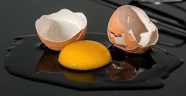 egg-943413_640